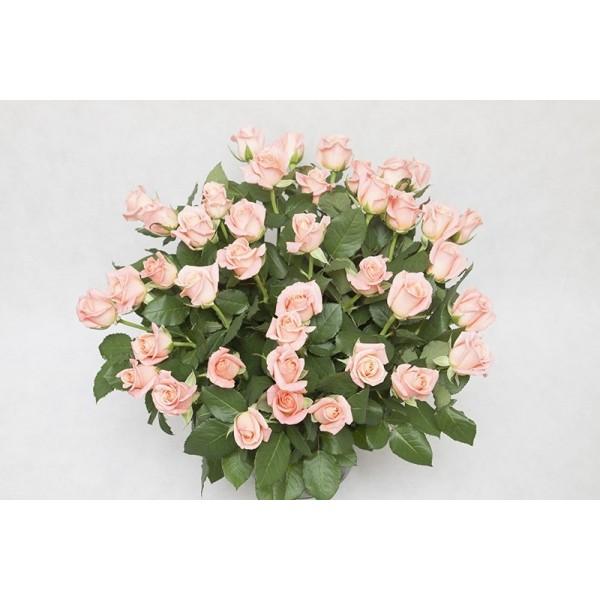 """Kosz """"60 kolorowych róż"""" -10%"""