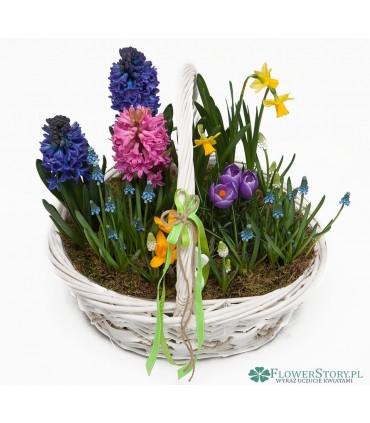 """Bukiet """"100 kolorowych kwiatów"""""""