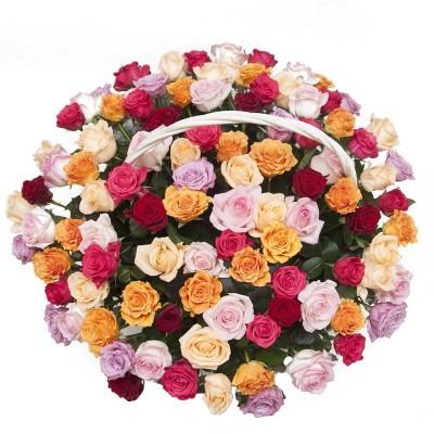 Wiadreko 15 róż